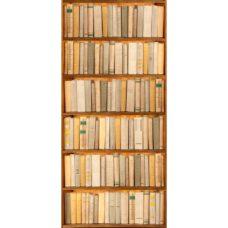 Adesivo per Porta: Finta libreria
