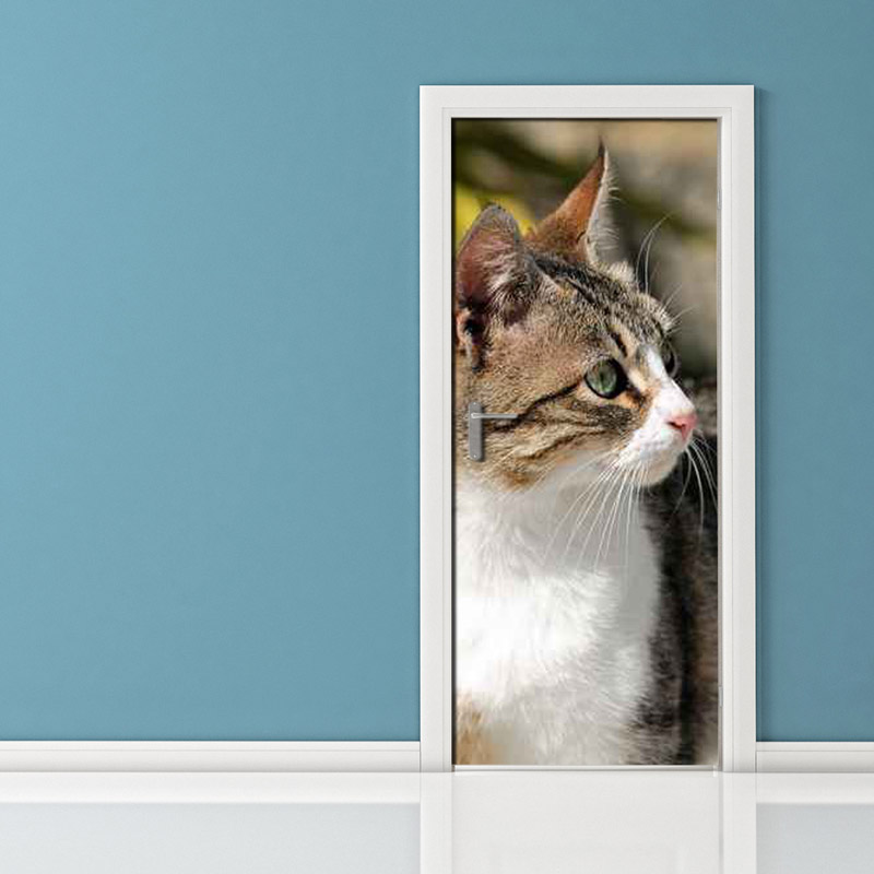 Adesivo per porta: gatto attento