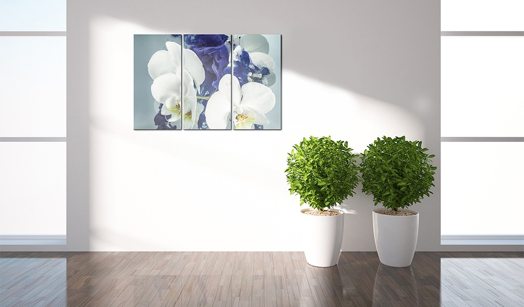 Quadro orchidee chimeriche for Quadri moderni orchidee