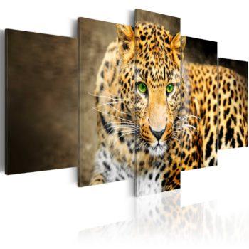 Quadro: tigre con occhi verdi