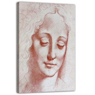 Testa di donna: illustrazione di Leonardo Da Vinci